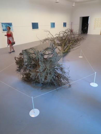 Robbert Simson Dead tree